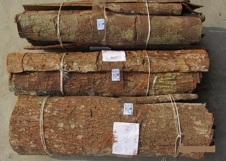 卡宾达树皮是什么 壮阳食物有哪些