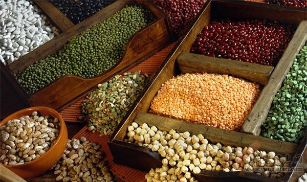 秋冬季吃什么豆好 秋季饮食的方法
