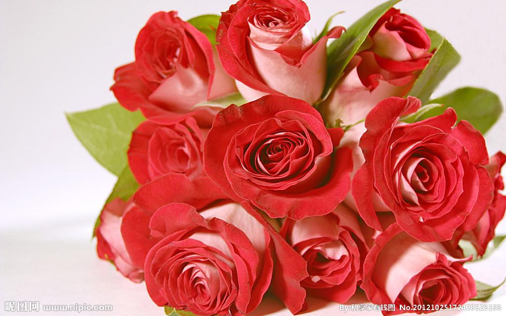 玫瑰花能吃吗 哪些人不能吃玫瑰花