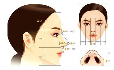 综合隆鼻的两种材料哪种好
