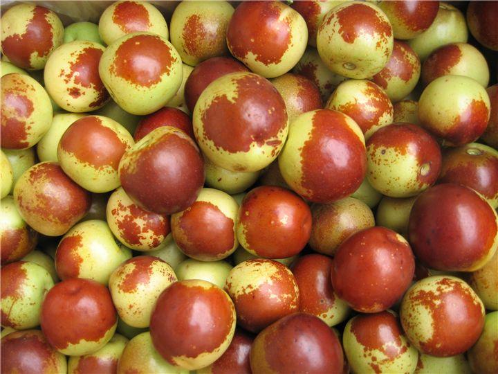 冬枣的营养价值 吃冬枣的好处