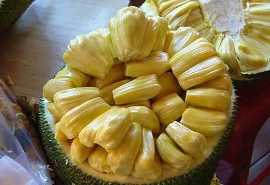 菠萝蜜的营养价值 吃菠萝蜜的好处