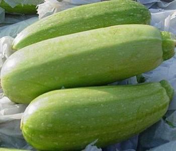 越瓜的吃法 哪些人不能吃越瓜