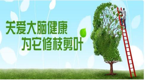 中国脑健康日:脑健康-瑰丽颜脑司令绿色抗衰新突破!
