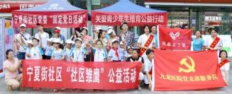 成都九龙妇科医院、宁夏社区、成都义工联三大党支部