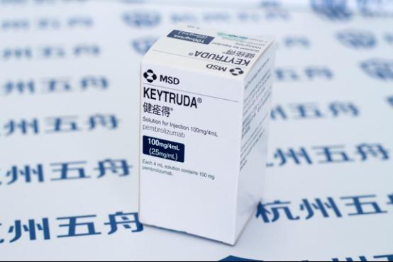 香港PD1对肾癌有效率